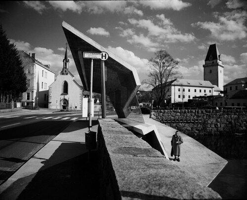 Foto: Dietmar Tollerian