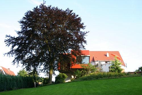 Foto: archwerk Bauplanungen GmbH & Co.KG