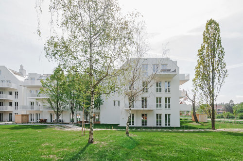 G13 - Umbau Wohnhäuser Gallgasse Wien, Foto: AllesWirdGut / Guilherme Silva Da Rosa