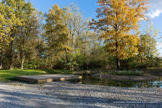Auwiesen, Foto: Freiland Umweltconsulting ZT GmbH
