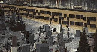 Urnengräber Friedhof Hötting, Foto: Laurin Naschberger