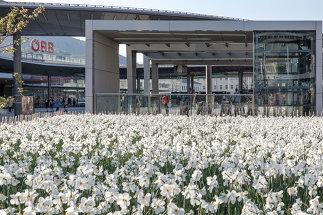 Nahverkehrsdrehscheibe Graz Hauptbahnhof, Foto: Helmut Pierer