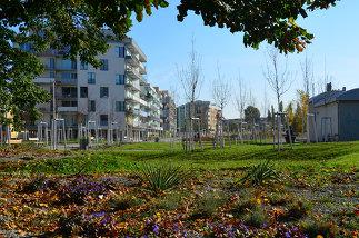 Leon-Zelman-Park, Foto: Karl Grimm
