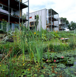 Bauen in der Gruppe - 3 Einfamilienhäuser  Messendorfberg, Foto: Raiffeisen Wohnbausparen