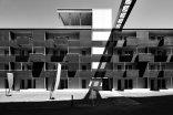 """""""Holzregal"""" Wohnateliers in Wien Liesing, Foto: Norman Radon"""