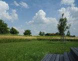 Garten UuK, Foto: Gernot Dessovic