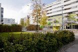 Wohnhausanlage Satzingerweg, Foto: rajek barosch landschaftsarchitektur